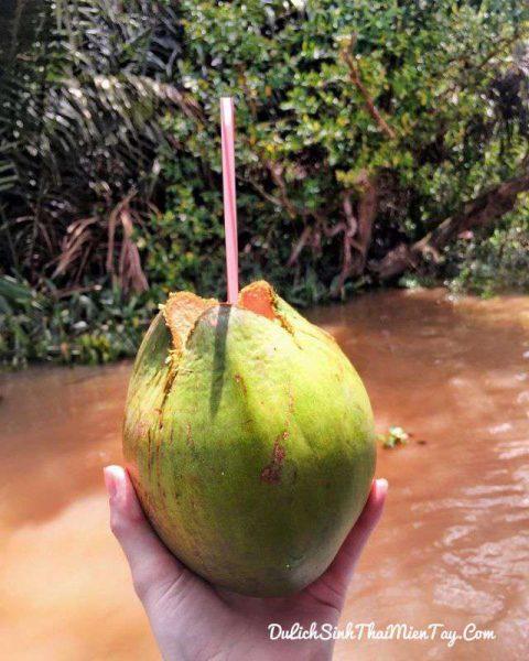 Thưởng thức dừa xiêm mát ngọt và chia tây miền Tây sông nước