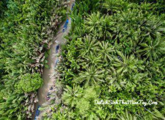 Ngồi trên những chiếc xuồng ba lá lên lỏi trong những con rạch dừa nước khi du lịch miền tây sông nước