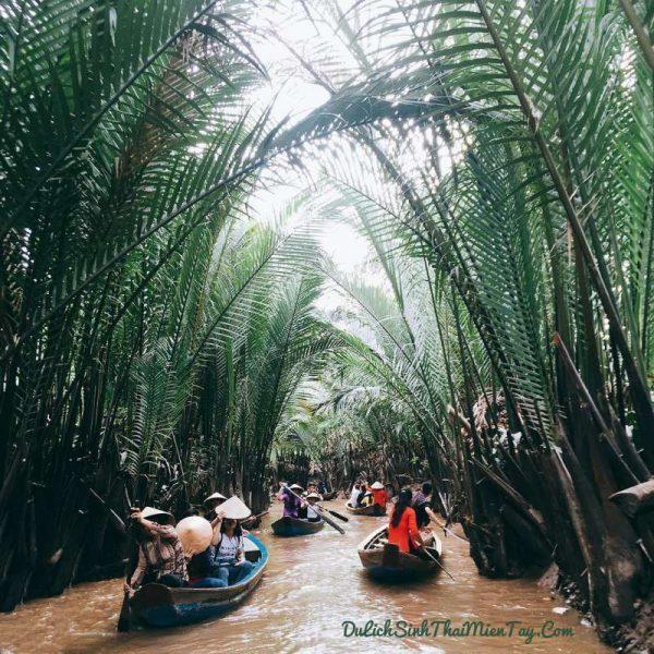 Thuyền chèo dưa du khách xuôi theo con rạch len lỏi qua các hàng dừa nước xanh ngát