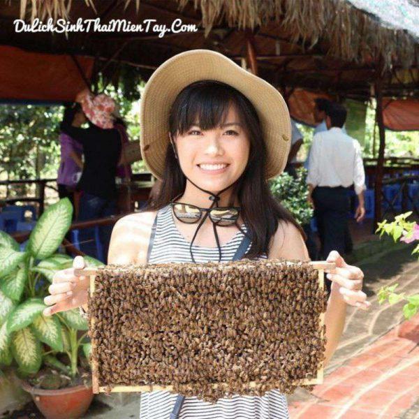 Du khách sẽ được tham quan cơ sở nuôi ong và nếm mật ong trong tổ