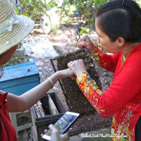 Tận tay nếm mật ong nguyên chất