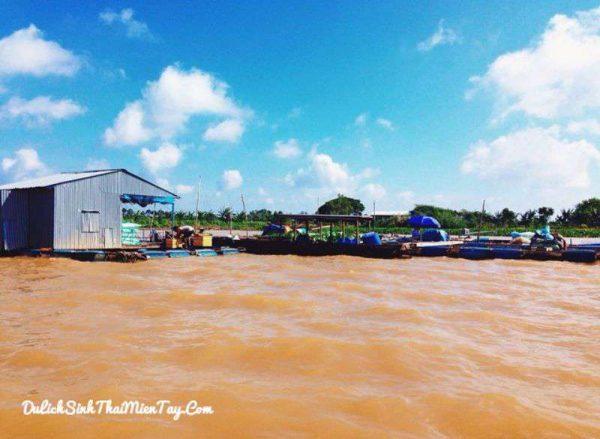 Ngắm nhìn lại miền Tây sông nước với những nhà bè nuôi cá