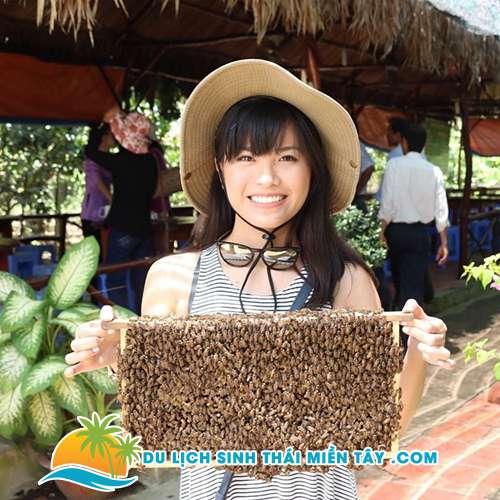 Tham quan trang trại nuôi ong và thưởng thức trà mật ong phấn hoa