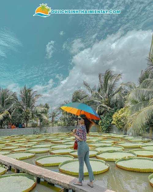 Du lịch miền Tây - Chùa lá sen Đồng Tháp