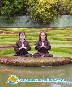 Tour du lịch Miền Tây - chùa lá sen Đồng Tháp