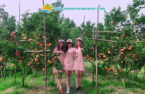 Tour du lịch miền Tây 2N1D - Vườn quýt hồng Lai Vung Đồng Tháp