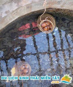 Luộc trứng gà tại khoáng suối nóng Bình Châu
